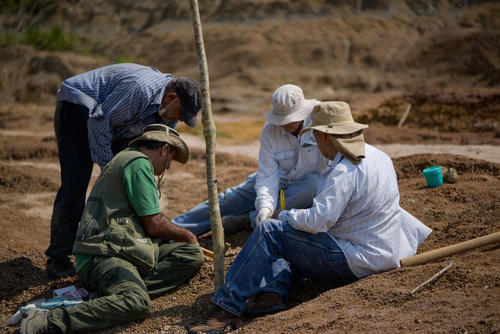 Expedição ocorreu entre pesquisadores da Ufac e Musa  — Foto: Ruan Fogo/Arquivo pessoal