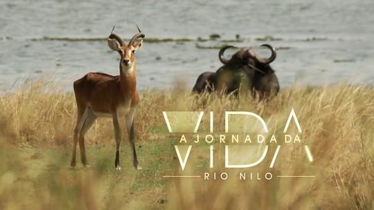 'A Jornada da Vida': a viagem pelo rio Nilo chega a Uganda