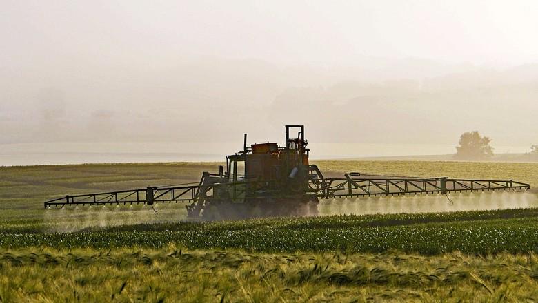 agrotóxicos-defensivos-pesticida (Foto: Pixabay)