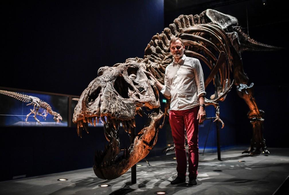 Esqueleto do tiranossauro Rex passa a ser exposto em Paris (Foto: Stephane de Sakutin/AFP)