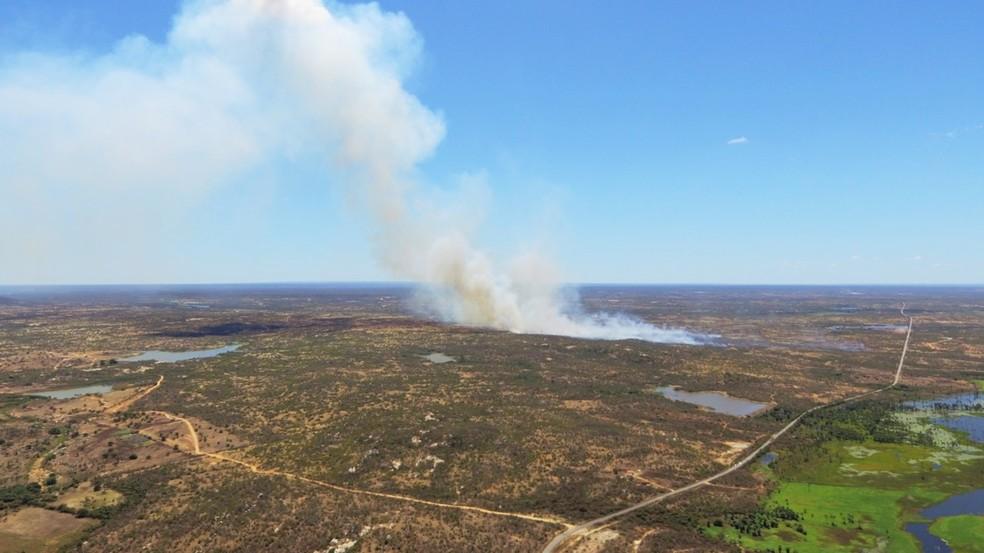 Chamas queimaram e destruíram uma área superior a 10 hectares, o equivalente a 100 mil metros quadrados entre Paraú e Upanema — Foto: Redes sociais