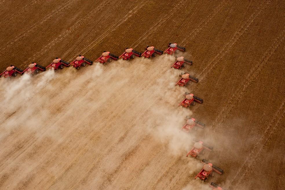 Favorecida pelo clima, agropecuária teve colheita recorde em 2017 (Foto: Sedec-MT/Divulgação)