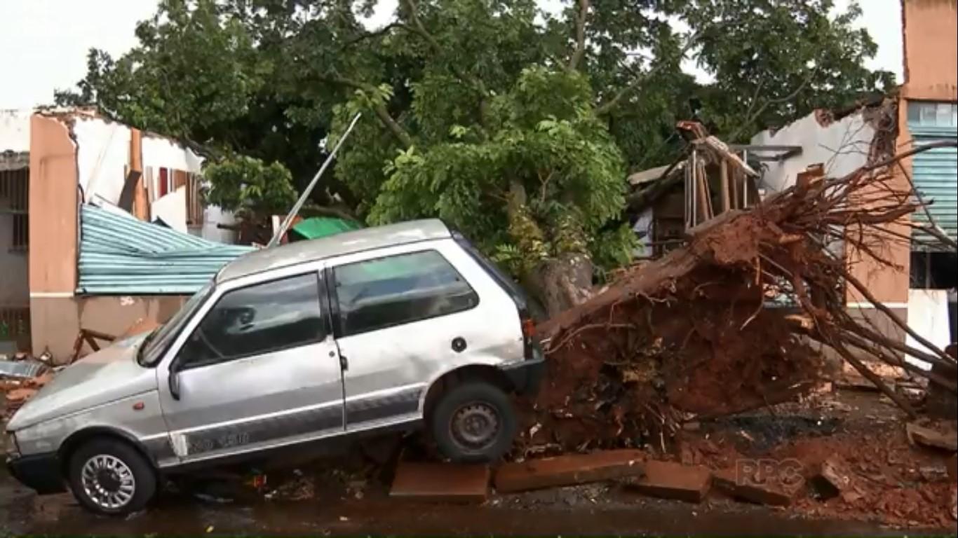 Em 2 anos, Maringá paga R$ 1,1 milhão em indenizações por quedas de árvores e galhos - Noticias