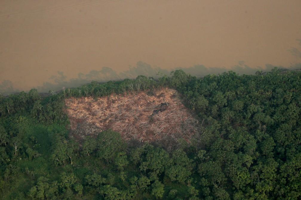 Vista aérea de área desmatada na floresta amazônica. — Foto: Reuters/Ueslei Marcelino
