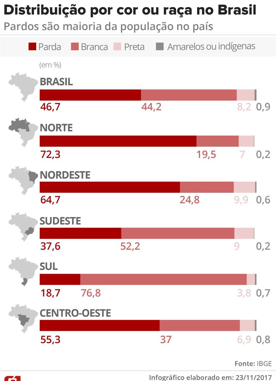 Infográfico mostra distribuição por cor ou raça no Brasil (Foto: Arte/G1)
