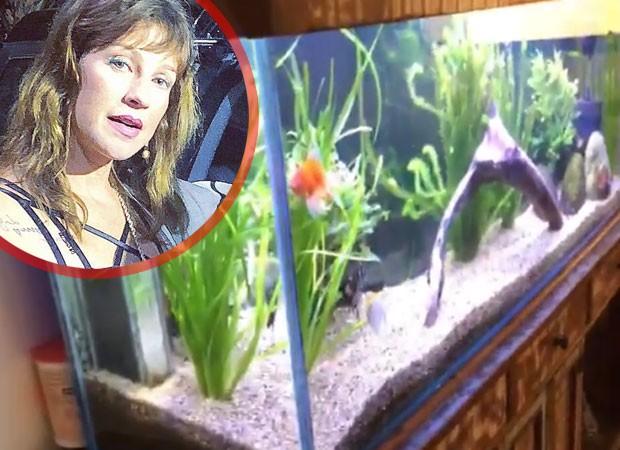 Luana Piovani de desfaz de aquário  (Foto: Reprodução)