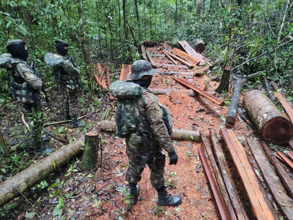 Militares durante operação Ágata, de combate ao desmatamento em floresta no Norte do Amapá — Foto: Exército Brasileiro/Divulgação