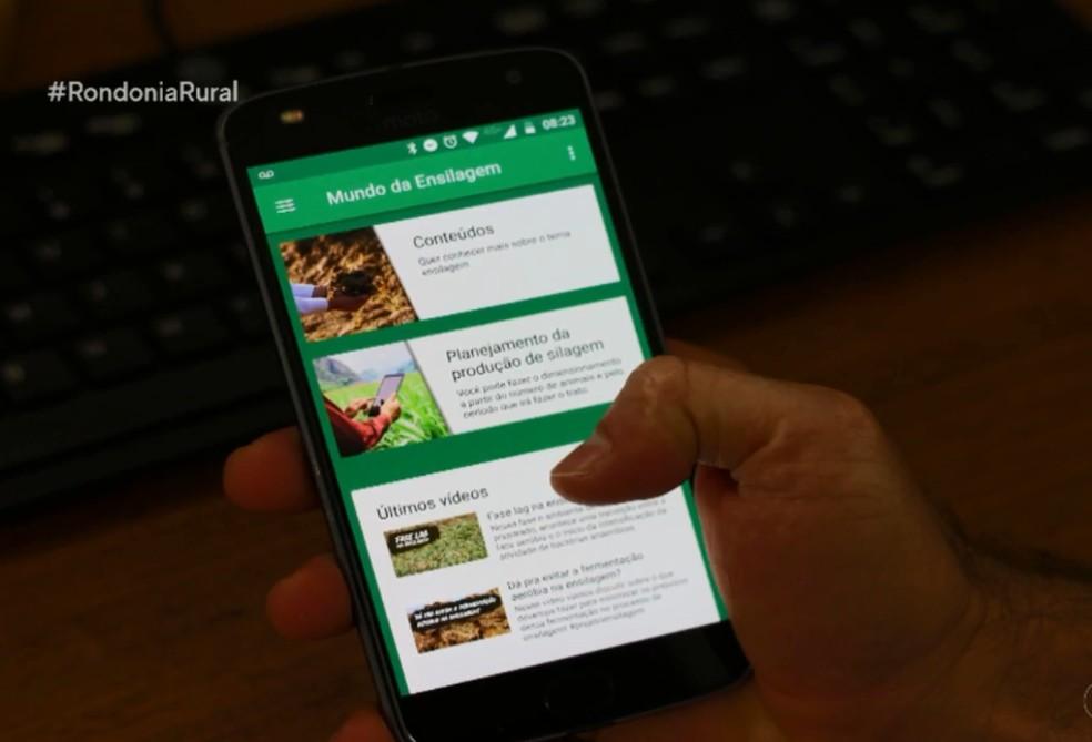 """Vídeos são disponibilizados em um canal por plataforma digital com o perfil de """"Mundo da Ensilagem"""" — Foto: Rondônia Rural / reprodução"""