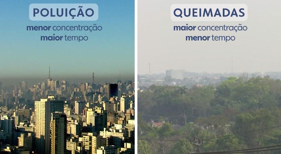 Poluição x queimadas — Foto: Arte/TV Globo