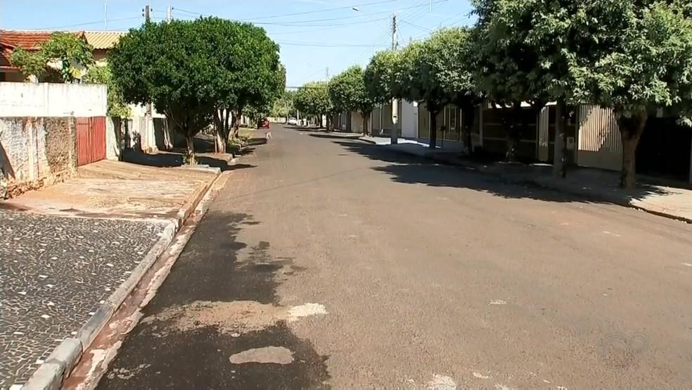 Sete gatos foram achados mortos no bairro Jardim Novo Mundo em Jales — Foto: Reprodução/TV TEM