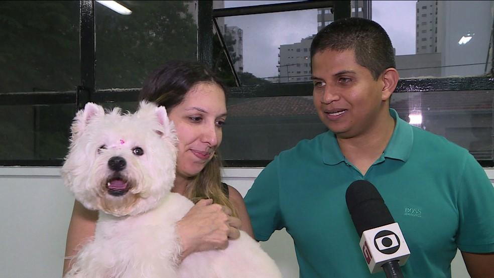 Cachorrinha faz festa ao reencontrar donos após ser roubada durante assalto a carro na Zona Sul de SP — Foto: Reprodução TV Globo