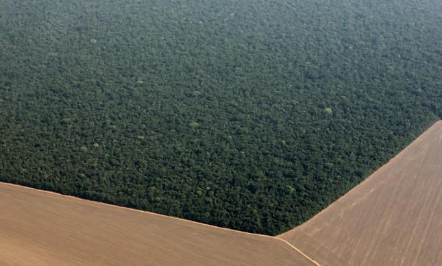 Plantação de soja avança sobre a floresta Amazônica