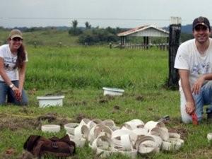 Pesquisadores analisam dejetos de gado em Rondônia (Foto: Edmilson Rodrigues/Divulgação)