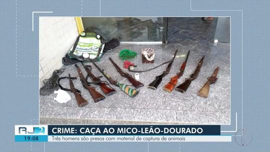 Homens são detidos em Silva Jardim em ação da Polícia Ambiental e Instituto Chico Mendes