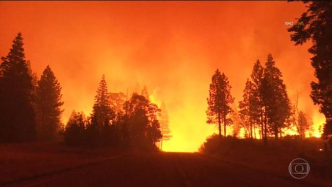 Incêndios florestais destroem centenas de casas na Califórnia