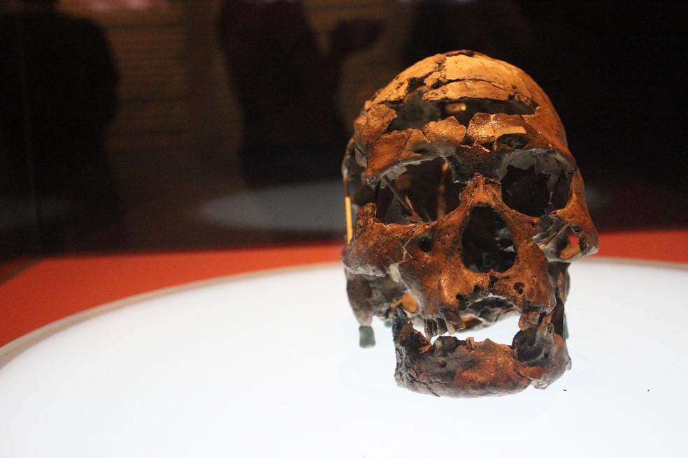 Museu do Homem Americano conta história da humanidade — Foto: Pedro Santiago/G1