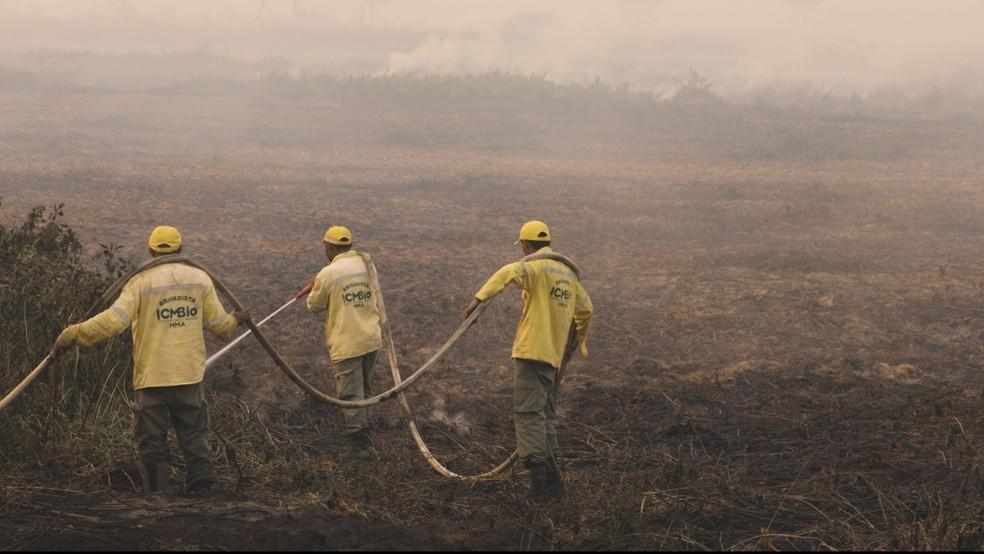 Entidades ligadas ao meio ambiente alertam para risco de incêndios no Pantanal — Foto: SOS Pantanal/Divulgação