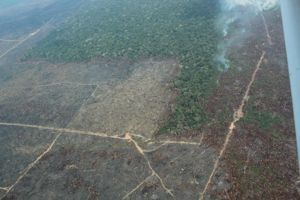 Desmatamento no sul do Amazonas, em Apuí — Foto: Jonatas Boni/G1