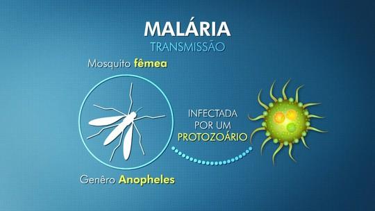 Malária não oferece mais riscos para moradores de Vila Pavão, no ES