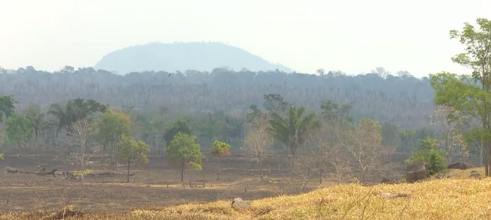 Pastagens perto de área da reserva já foram destruídas — Foto: Rede Amazônica/Reprodução