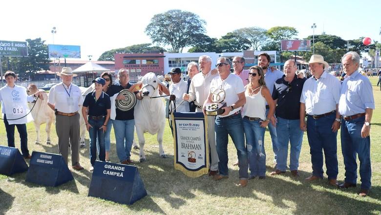 O Grande Campeão da raça Brahman acompanhado dos funcionários da fazenda Casa Branca, sua proprietária (Foto: Divulgação)