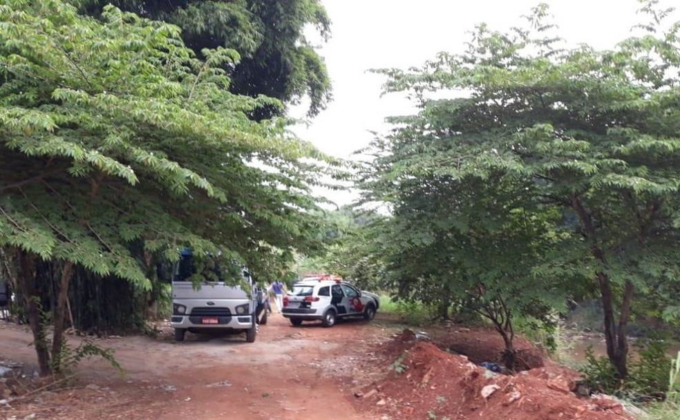 PM faz buscas de suspeitos de roubo em mata em Araraquara (Foto: ACidadeON/Araraquara)