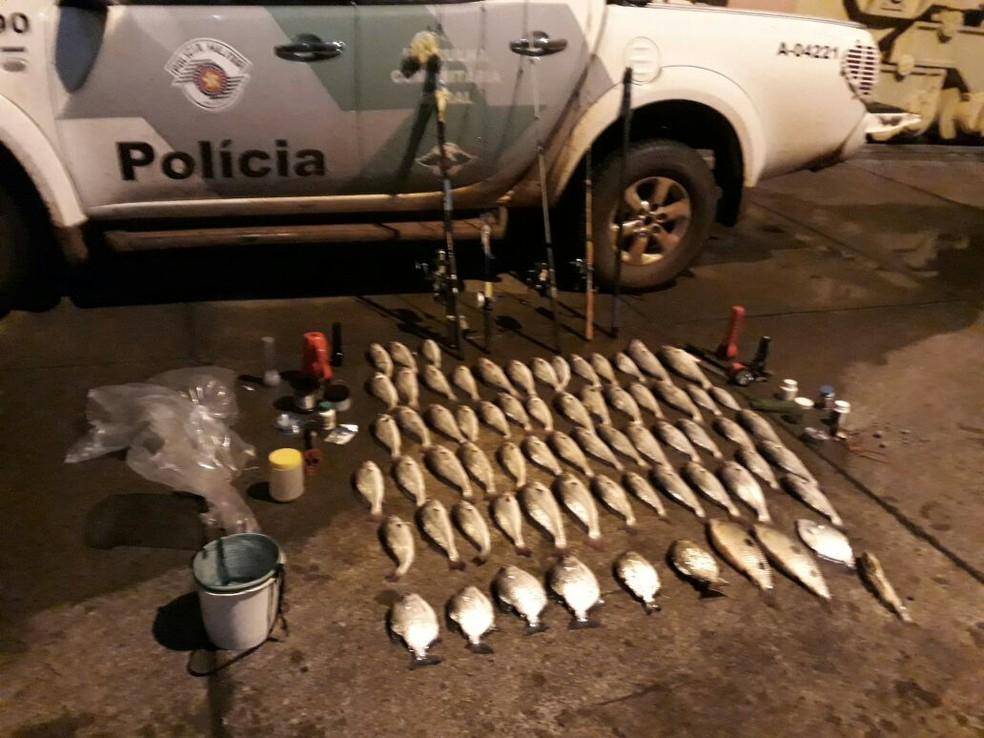 Polícia apreendeu 26 quilos de peixes pescados irregularmente em Ouroeste (SP) (Foto: Polícia Militar/Divulgação)