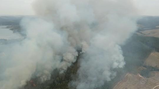 Incêndio de grande proporção atinge área de eucalipto em Pilar do Sul