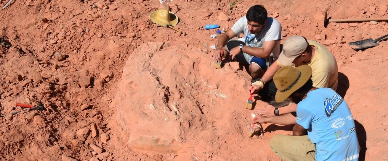 Brasileiros trabalham na escavação do dinossauro (Foto: Divulgação/UFSM)