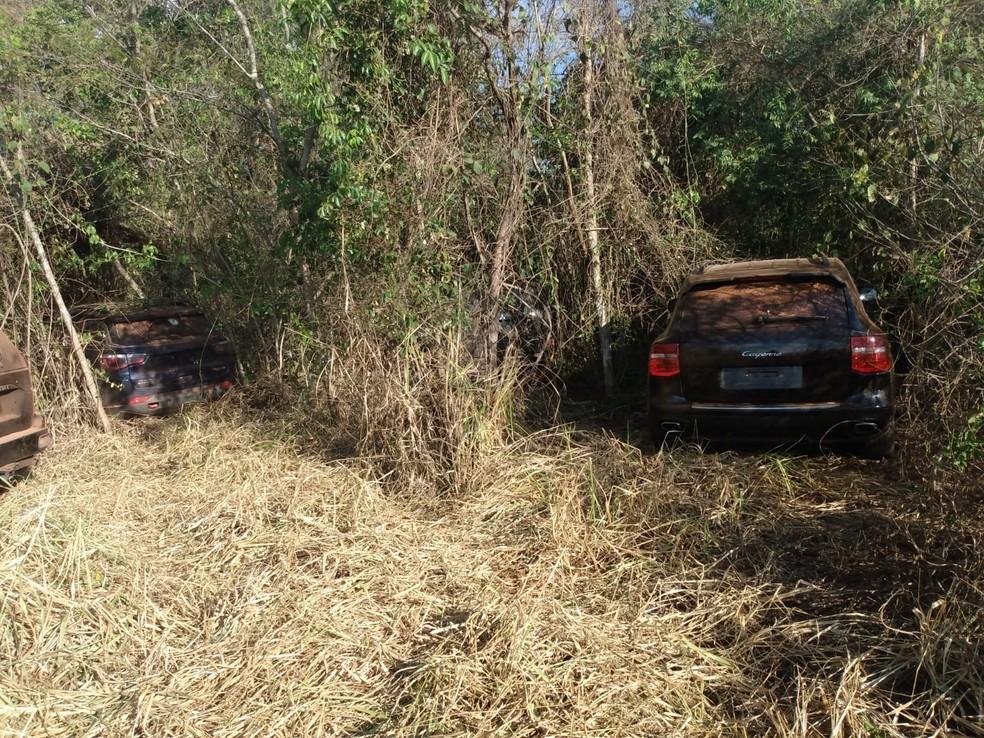 Carros de luxo foram encontrados em mata  — Foto: Arquivo Pessoal