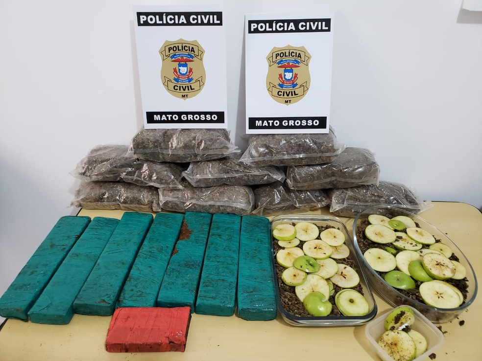 Droga encontrada no local — Foto: PJC/MT