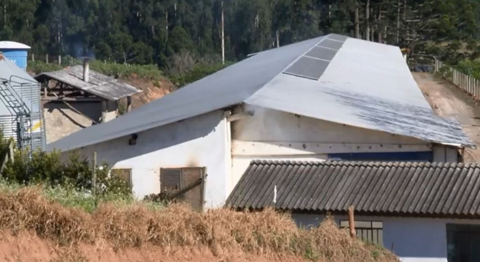 Placas solares foram instaladas na propriedade do agricultor, na RMC — Foto: RPC/Reprodução