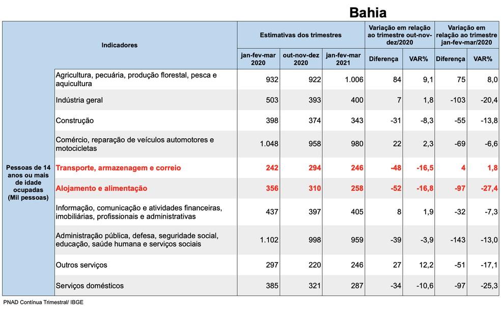 Dados da desocupação na Bahia divididos por indicadores — Foto: Divulgação/IBGE