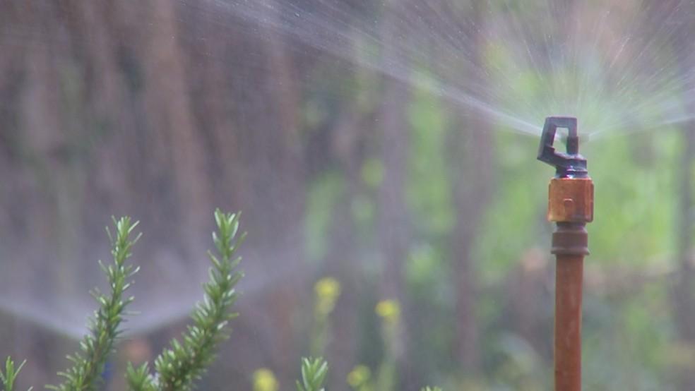 Preservar a água é a única saída (Foto: TV TEM)