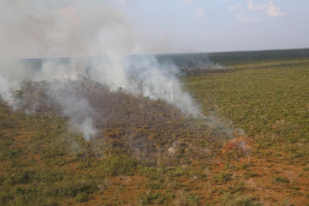 Parque Estadual do Mirador no Maranhão. — Foto: Divulgação/Exército