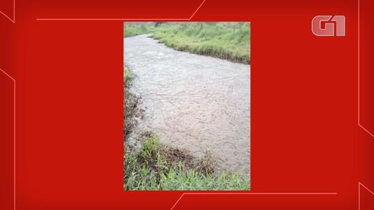 Polícia investiga resíduos industriais jogados em rio de MS: 'Cheiro é forte e está matando peixes'; veja o vídeo