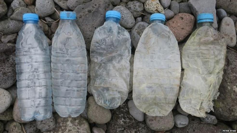 Na última década, o número de garrafas plásticas vindas China achadas na Ilha Inacessível disparou. — Foto: Peter Ryan/Divulgação