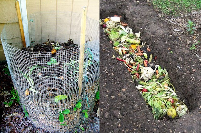 compostagem-composteira-doméstica (Foto:  Divulgação/The Garden Love e Real Farmacy)