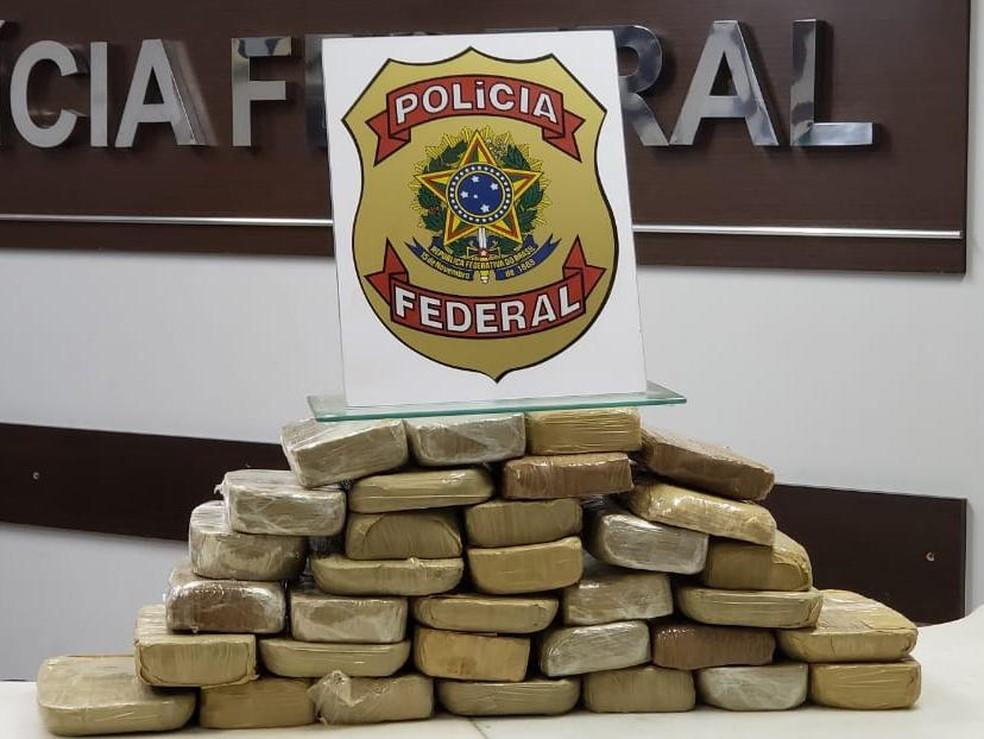 Droga estava escondida em carreta — Foto: PF/Divulgação