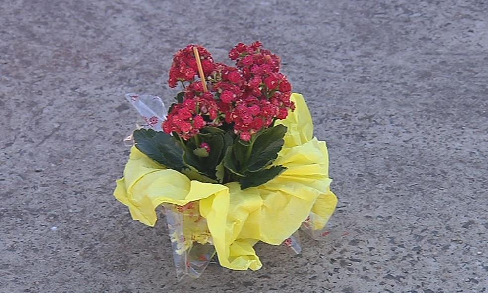 Bombom foi dado junto com uma flor e uma carta — Foto: Reprodução / TV TEM