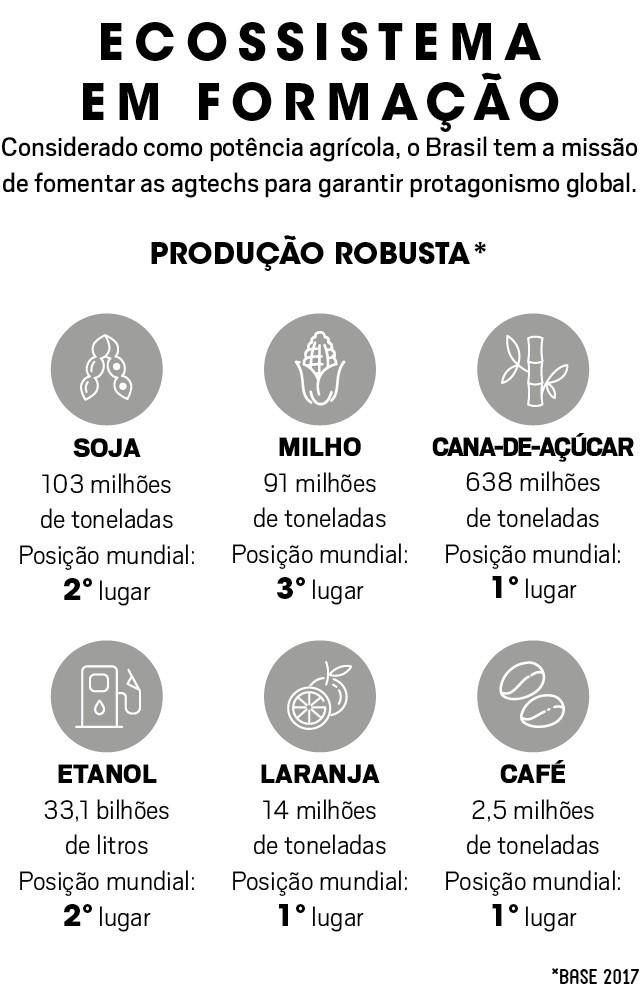 Estímulo ao empreendedorismo marca nova era da agricultura brasileira (Foto: Marina Della Valle/Folhapress)