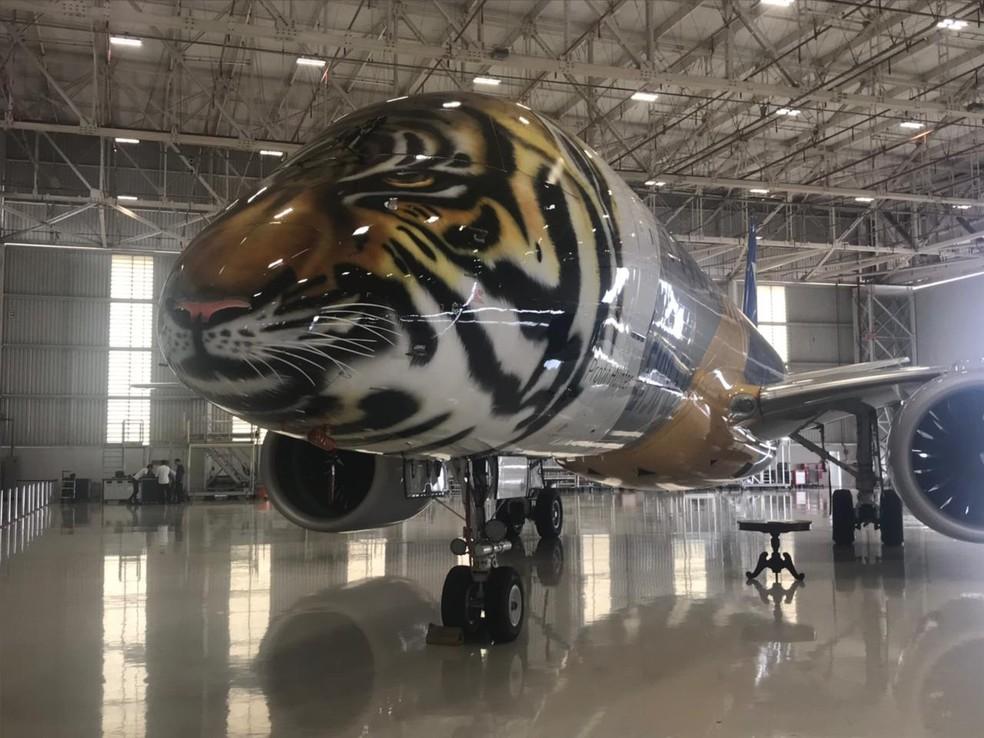 Aeronave foi pintado na sede da Embraer em São José dos Campos (Foto: Camilla Motta/G1)