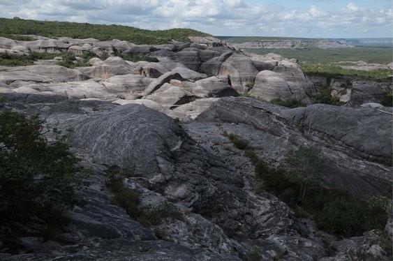 Ex-brigadistas vão atuar no combate ao incêndio no Parque da Serra das Confusões, maior área de preservação da caatinga