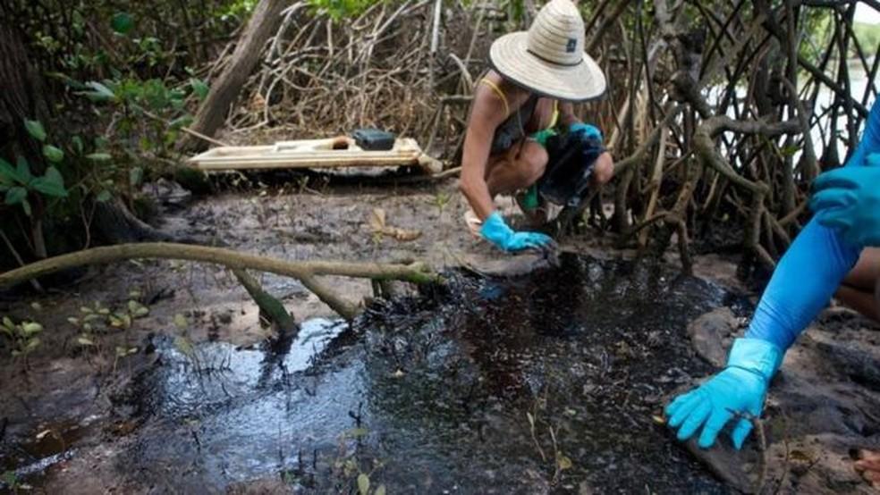 A fotógrafa Isabel Sant'Ana descreve cenário 'assustador' em manguezal — Foto: Pedro Accioly/BBC