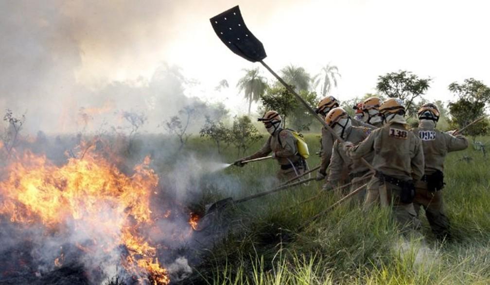 Trabalho dos brigadistas são essenciais para a combate dos incêndios no Pantanal.  — Foto: GOV-MS/Reprodução