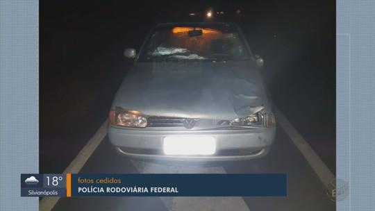 Idoso morre atropelado por carro na BR-459, em Caldas, MG