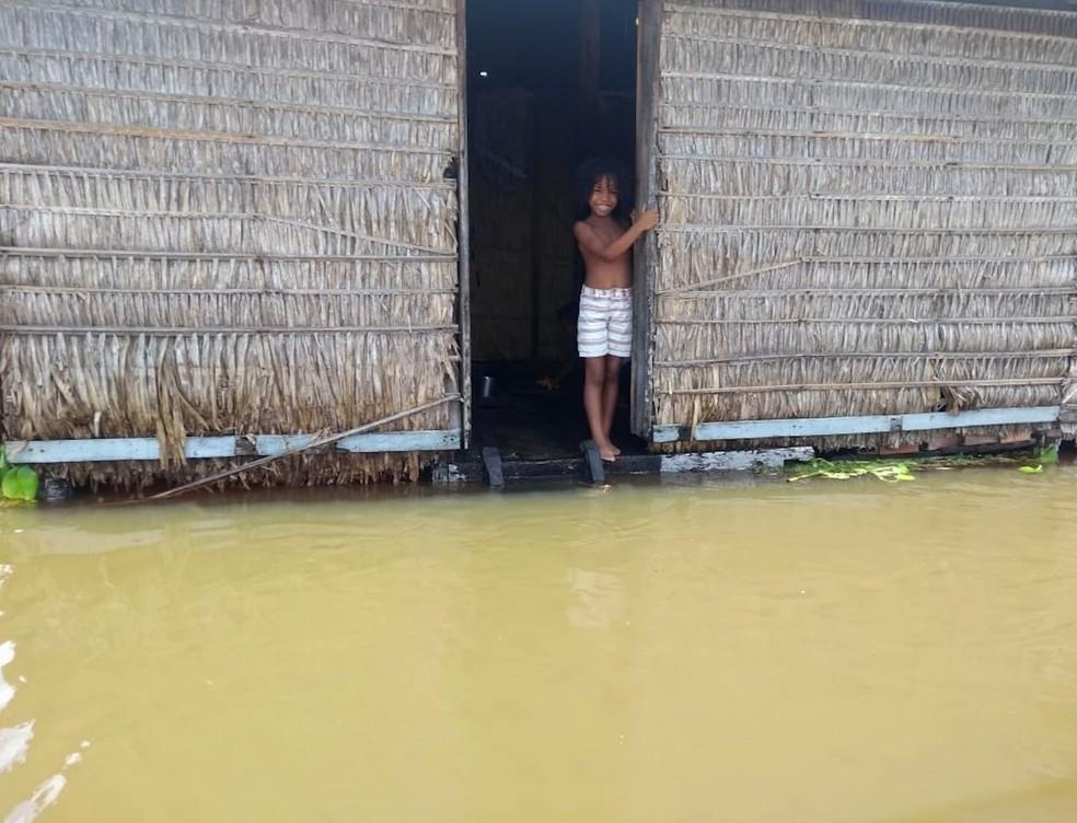 Várias famílias insistem em ficar nas casas mesmo com o aumento do nível do rio.  — Foto: Reprodução/ TV Mirante