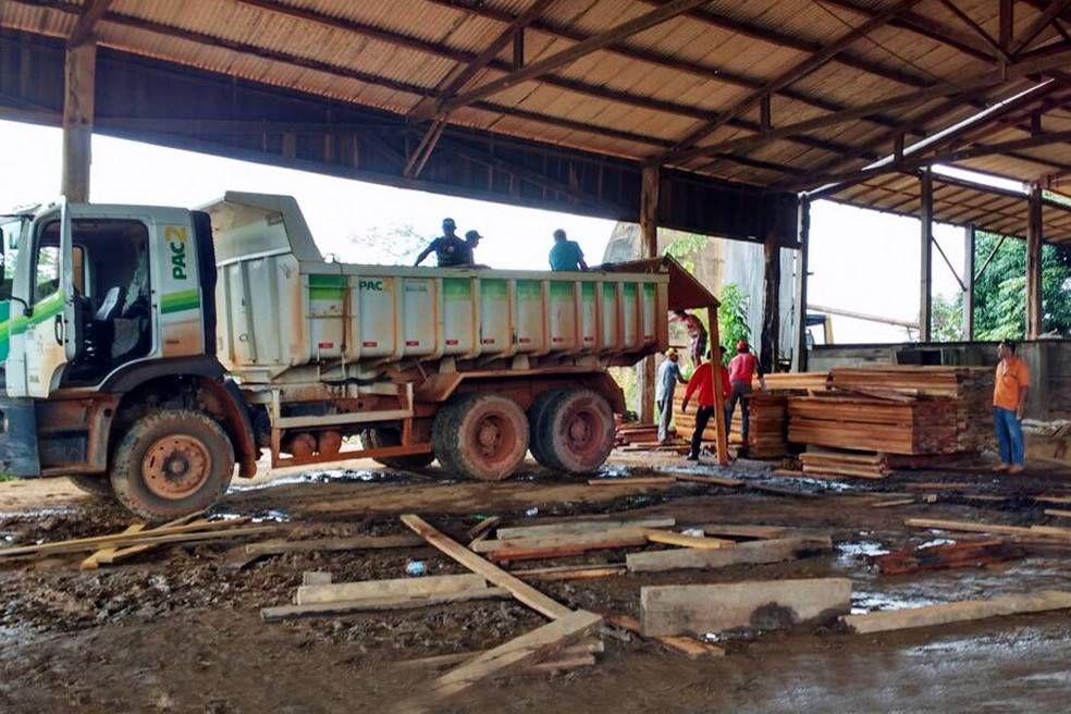 Serraria foi embargada pelo Ibama por atuação ilegal e madeira apreendida foi encaminhada à Prefeitura de Medicilândia. — Foto: Divulgação/Ibama