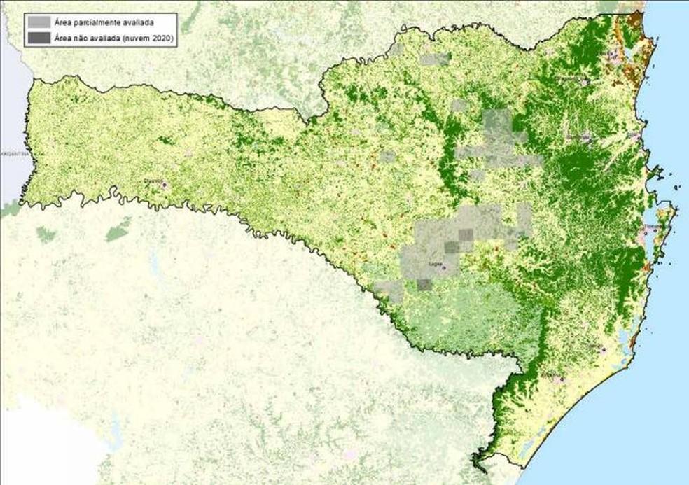 Figura mostra (em verde) a área de mata perdida entre 2019 - 2020 em Santa Catarina — Foto: Atlas da Mata Atlântica/Reprodução