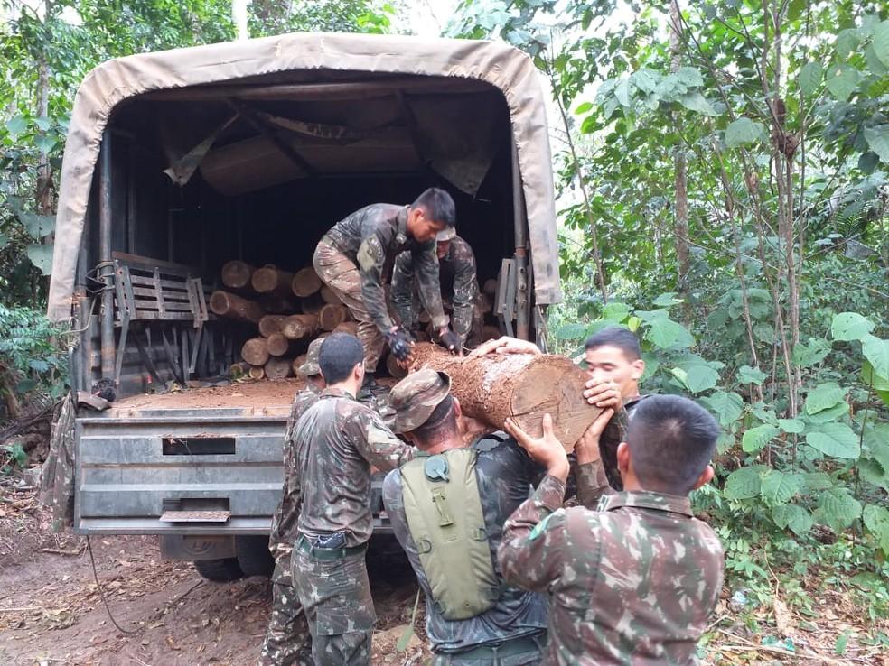 Apreensões feitas durante Operação Verde Brasil 17, em RO — Foto: Operação Verde Brasil 17/ Divulgação